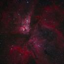 The Great Carina Nebula,                                Camissa