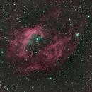 SH2-261 Lower's Nebula,                                Nigel