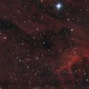 IC 5067, The Pelican Nebula,                                Vlaams59