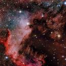NGC 7000,                                Martin