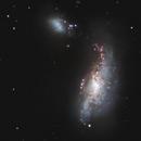 NGC 4490,                                Carsten Dosche