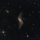 NGC660 Galaxy,                                Sascha Schueller