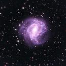 M83 Southern Pinwheel Galaxy,                                turbo_pascale