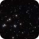 Beehive Cluster M44,                                Miguel Garcia