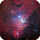 Christmas Tree Cluster, Cone Nebula, NGC 2264, Fur Fox,                                Vadim Kozatchenko