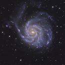 M101 The Pinwheel Galaxy,                                Lyn Peterson