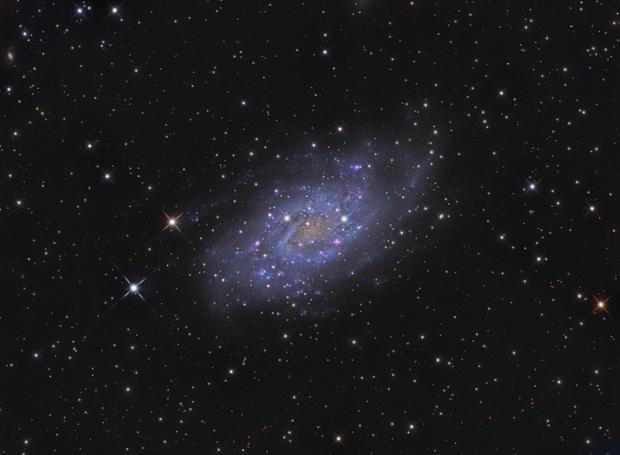 NGC 2403,                                Lyn Peterson