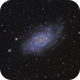 NGC 2403,                                Lyn Peterson