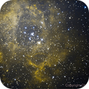 Rosette Nebula,                                Chris Price