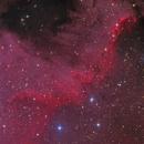Cygnus Wall,                                Kang Yao