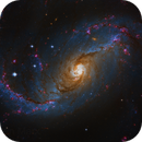 NGC 1672,                                Steven Marx