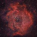 Rosette nebula RGB (DSLR) and Ha (CCD),                                Joe Alexander