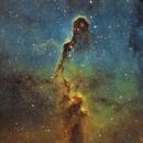 IC 1396 Elephant's Trunk Nebula / Apod GrAG 08.13.21,                                Anthony Husson