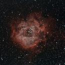 Rosette Nebula & NGC 2244,                                Samuel Khodari
