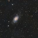 NGC 2403 on Lacerta 250 F4 with ASI 294MC,                                Piet Vanneste