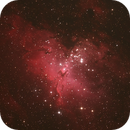 M16 - Eagle Nebula,                                Kathy Walker