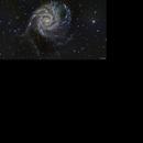 M101,                                Terry Danks