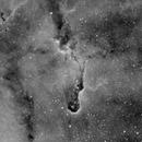 Elephant's Trunk Nebula Ha,                                Mark Minor