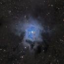 ngc7023 (Iris nebula)LsRGB,                                *philippe Gilberton