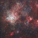 NGC 2070, Tarantula Nebula in OIII and Ha,                                Geoff
