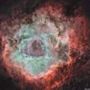 the rosette nebula starless,                                karimastro