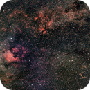 Deneb Region 50mm View,                                Darren Pursel