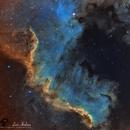 """Nebulosa """"Muro del Cigno"""",                                Andrea Losi"""