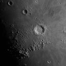 Copernicus,                                Gintas