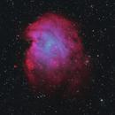 The Monkey Head Nebula in HOO,                                Brian Meyerberg