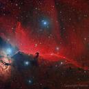 IC 434 HaRGB test,                                Paddy Gilliland