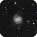 M100  NGC4321,                                Anne-Maree McComb