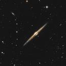 NGC 4565 - La Galassia Spillo,                                Paolo Zampolini