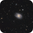 M95 in Leo,                                Paddy Gilliland