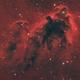 Boogeyman Nebula (LDN1622),                                Nico Carver