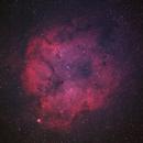 Elephant's Trunk IC1396,                                Bob Kinsman