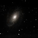 M81 (Galaxie de Bode) - Grande Ourse,                                Patrick ROGER