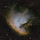 Sharpless in Cas -- The Pacman Nebula [Sh2-184] in SHO,                                G400