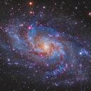 M33 - The Triangulum Galaxy,                                Jason Wiscovitch