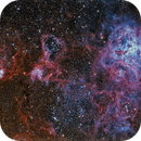 The Tarantula Nebula,                                Terry Robison
