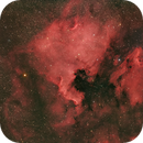 North America and Pelican nebula,                                Paul Schuberth