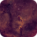 Elephant trunk RGB stars or starless? First light 6200MM,                                Dr Ralph Lange