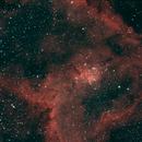 Heart Nebula,                                David Quattlebaum