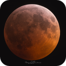 2019 Lunar Eclipse,                                Clau Lombriser