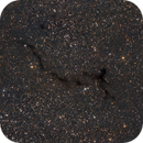 B150 The Seahorse / Little Man Running Nebula,                                Bernhard Zimmermann