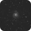 M74 - Phantom Galaxy,                                Ronald Clanton