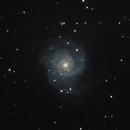 Galaxy M74,                                John Sojka jr