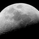 Half Moon,                                johannestaas