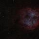 IC1396, Elephants Trunk,                                helios