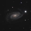 NGC 3338,                                Gary Imm