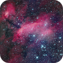 Prawn Nebula - IC 4628.,                                Adriano